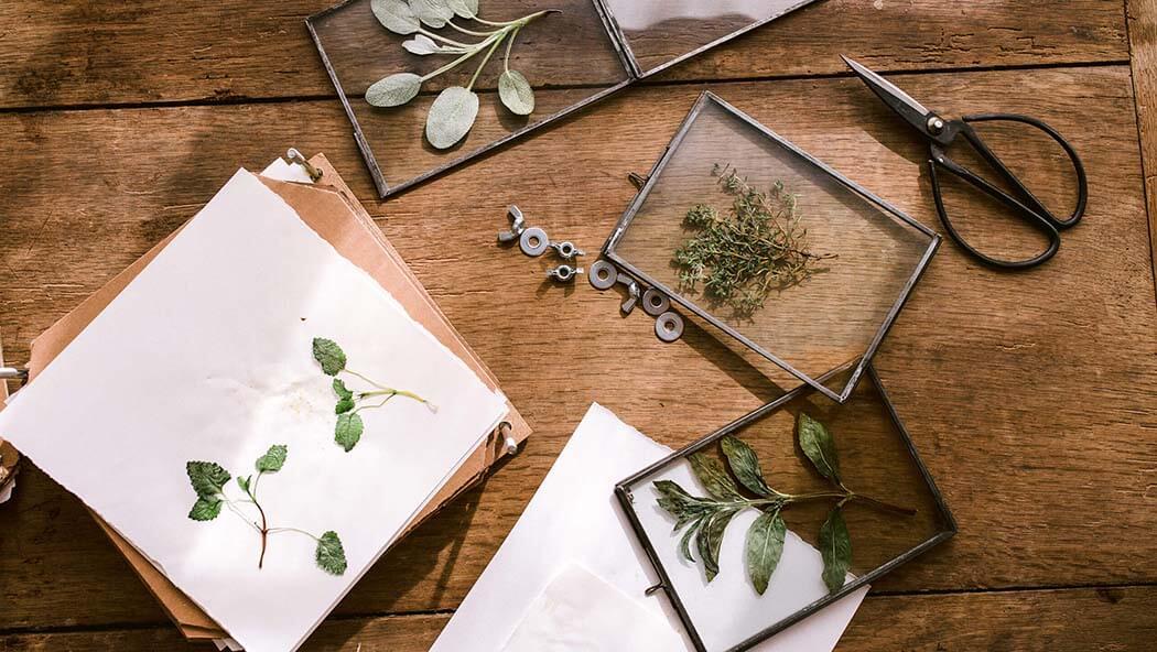 Pressing herbs